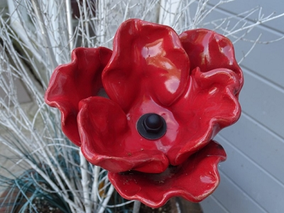 Poppies for Veterans