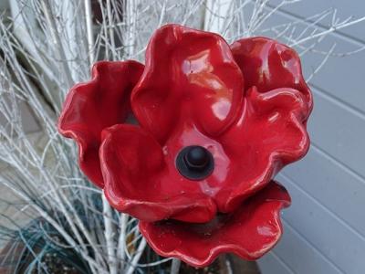 Poppies for Veterans
